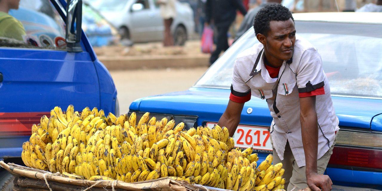 banán felállítása