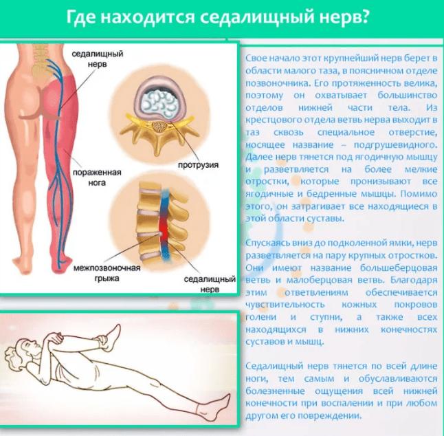 az erekció elektrostimulációja az erekciót befolyásoló gyakorlatok