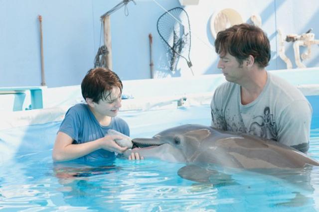 delfin-erekció