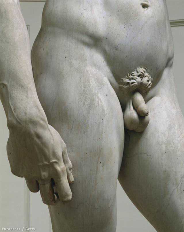 legkisebb pénisz méretük