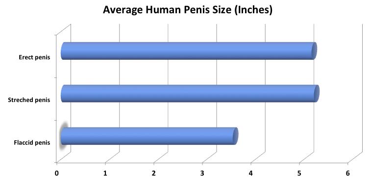 kis pénisz hormonok