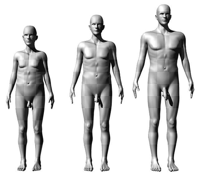 Transindex - Ismét számít a méret: vonzóbbak a hosszabb péniszű férfiak